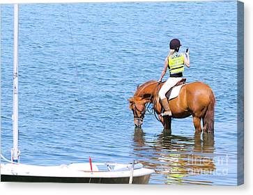 No Signal Canvas Print by Terri Waters
