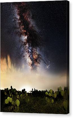 No Way Out Canvas Print by Matt Smith