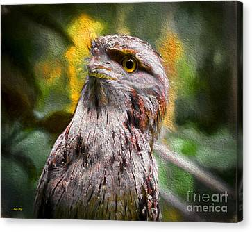 Nocturnal Beauty Canvas Print by Judy Kay