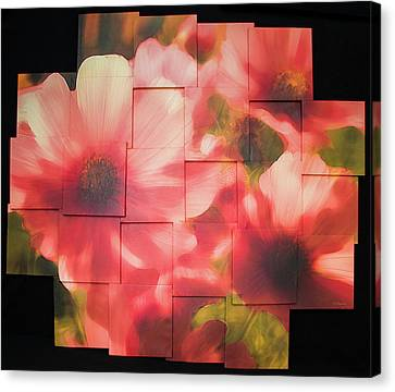 Nocturnal Pinks Photo Sculpture Canvas Print by Michael Bessler