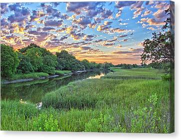 Canvas Print - Noisette Rising by Donnie Smith