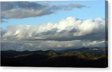Canvas Print featuring the photograph Norcal Wilds by Holly Ethan
