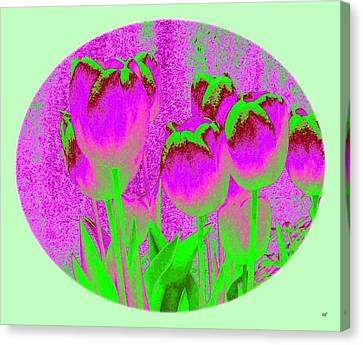 Noric House Tulips Canvas Print by Will Borden