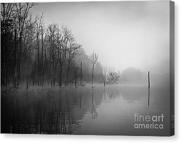Norris Lake April 2015 3 Canvas Print