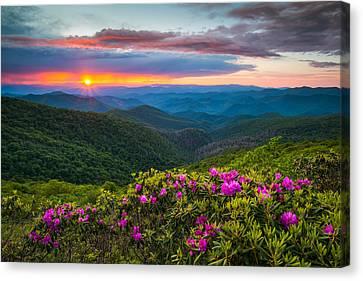 North Carolina Blue Ridge Parkway Landscape Craggy Gardens Nc Canvas Print by Dave Allen