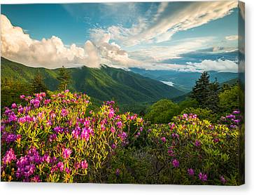 North Carolina Blue Ridge Parkway Spring Mountains Scenic Landscape Canvas Print by Dave Allen