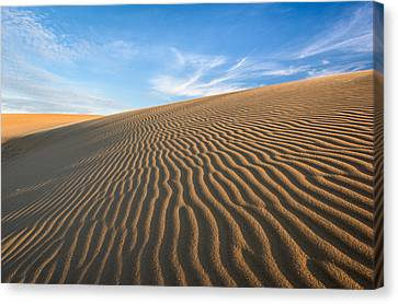 North Carolina Jockey's Ridge State Park Sand Dunes Canvas Print by Mark VanDyke