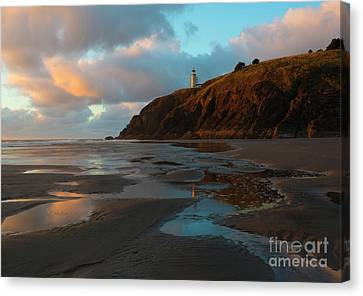North Head Light Reflections Canvas Print by Mike Dawson