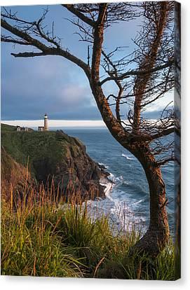 North Head Lighthouse 2 Canvas Print by Greg Vaughn
