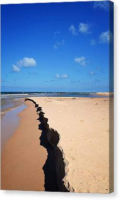 North Of Big Sable Point Canvas Print by Michelle Calkins