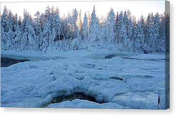 North Of Sweden Canvas Print