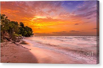 North Point Sunrise Canvas Print by Andrew Slater