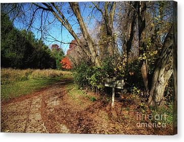 North Trail Loop Canvas Print by Jimmy Ostgard