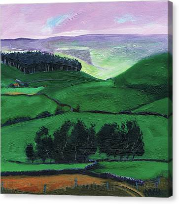 North York Moors Copse Canvas Print by Neil McBride