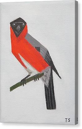 Northern Bullfinch Canvas Print