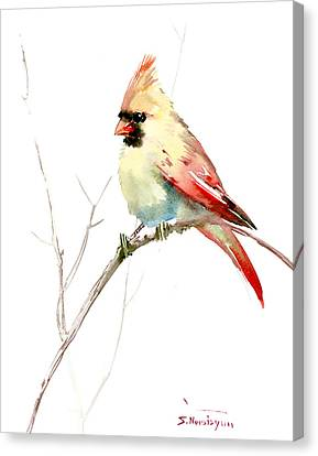 Northern Cardinal,female Canvas Print
