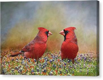 Northern Cardinals In Sea Of Flowers Canvas Print by Bonnie Barry