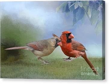 Northern Cardinals On A Spring Day Canvas Print by Bonnie Barry