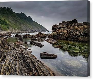 Canvas Print - Northern Coast by Ric Schafer