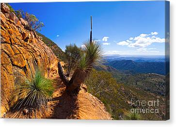 Northern Flinders Ranges And The Abc Range Canvas Print by Bill  Robinson