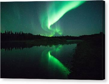 Canvas Print - Northern Lights Alaska by April Bielefeldt