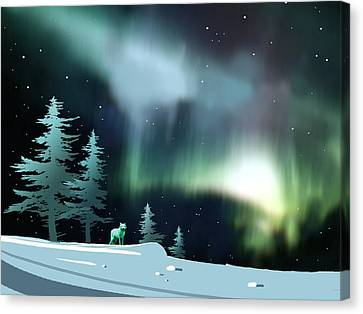 Northern Lights Canvas Print by Paul Sachtleben