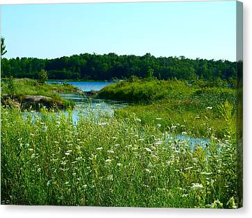 Canvas Print featuring the photograph Northern Ontario 1 by Claire Bull