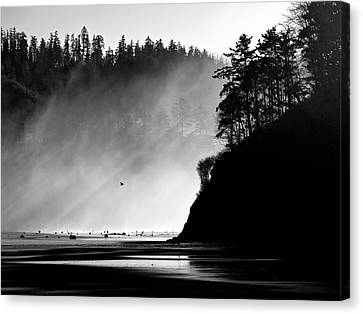 Shadows And Light Canvas Print - Northern Oregon Coast by Carol Leigh