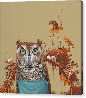Northern Screech Owl Canvas Print by Jasper Oostland
