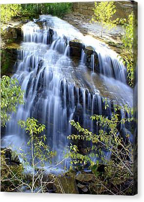 Northfork Falls Canvas Print by Marty Koch