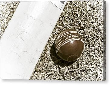 Nostalgic Cricket Bat And Ball Canvas Print by Jorgo Photography - Wall Art Gallery