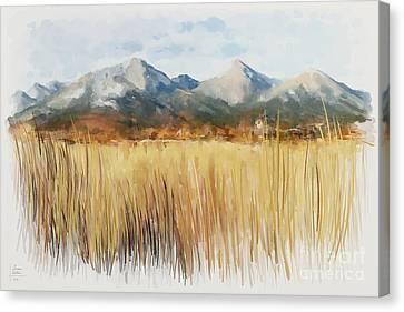 Not Far Away Canvas Print by Ivana Westin