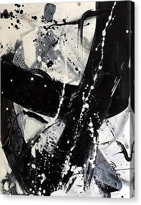 Not Just Black And White3 Canvas Print