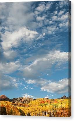 Canvas Print featuring the photograph Nothin' But Blue Skies by The Forests Edge Photography - Diane Sandoval