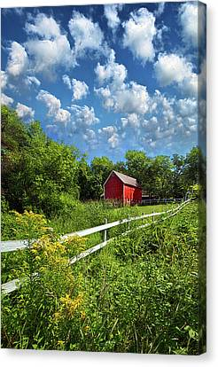 Noticing The Days Hurrying By Canvas Print by Phil Koch