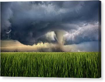 Barn Storm Canvas Print - Notill by Thomas Zimmerman