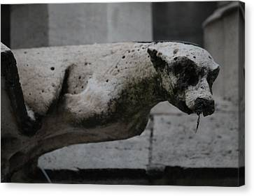 Canvas Print featuring the photograph Notre Dame Bat Gargoyle by Christopher Kirby