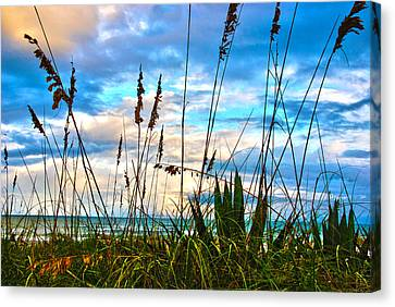 November Day At The Beach In Florida Canvas Print