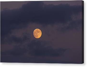 November Full Moon With Plane Canvas Print by Angela A Stanton