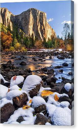 Yosemite Valley Canvas Print - November Morning by Anthony Michael Bonafede