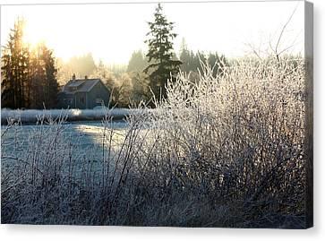 November Morning Canvas Print by Barbara  White