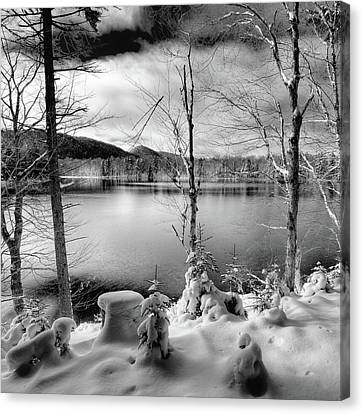 November On West Lake Canvas Print by David Patterson