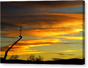 November Sunset Canvas Print by James BO  Insogna