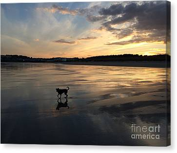 Ogunquit Beach Main Canvas Print - November Sunset by Laurie Pocher