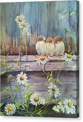 Now Where? Canvas Print by Patricia Pushaw