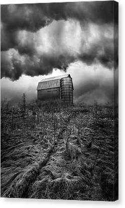 Nowhere To Hide Canvas Print by Phil Koch