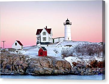 Keeper Canvas Print - Nubble Glow by Susan Cole Kelly