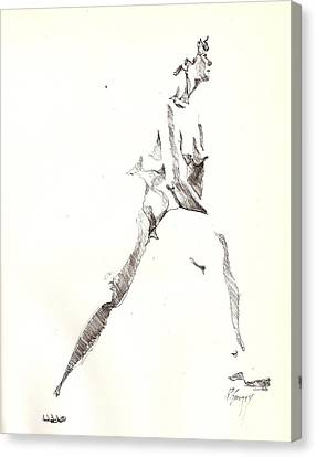 Canvas Print featuring the drawing Nude 6 by R  Allen Swezey