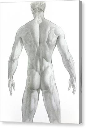 Canvas Print featuring the drawing Nude 7 by Valeriy Mavlo