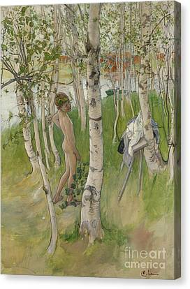 Nude Boy Among Birches Canvas Print